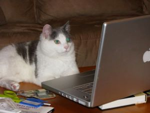 Katie surfing the web